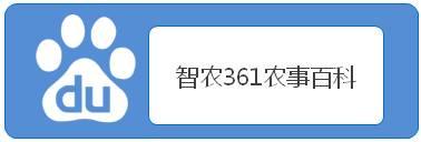 1599729003538342.jpg