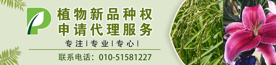 1602663501518091.jpg